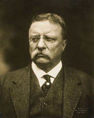 THEODORE ROOSEVELT: Immigration and elites.