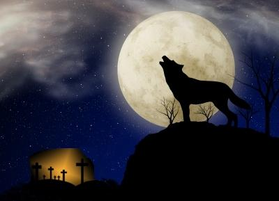 WOLVES IN THE PULPIT: A sign of the times.