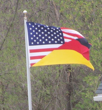 A WEIRD AMERICAN FLAG