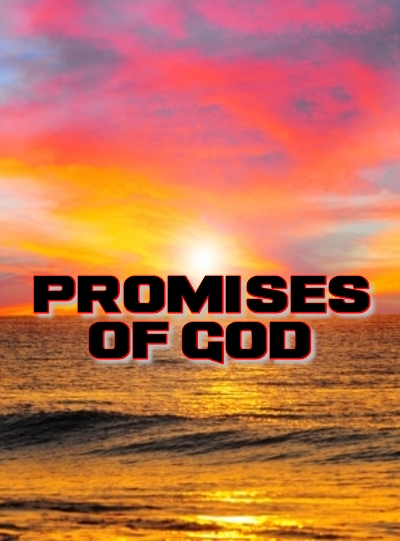 PROMISES OF GOD: The gulf between the promises God makes to believers and the people occupying the pews in the churches is a wide one.