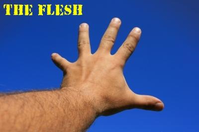 The Flesh warreth against the Spirit