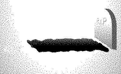 grave: Terri Schiavo