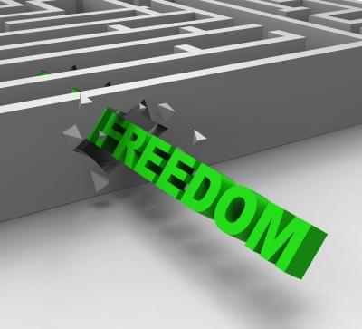 FREEDOM: Liberty vs License