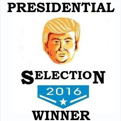 Donald Trump: 2016 Presidential Selection winner