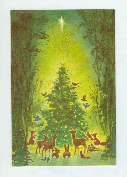 Christmas is a pagan holiday.