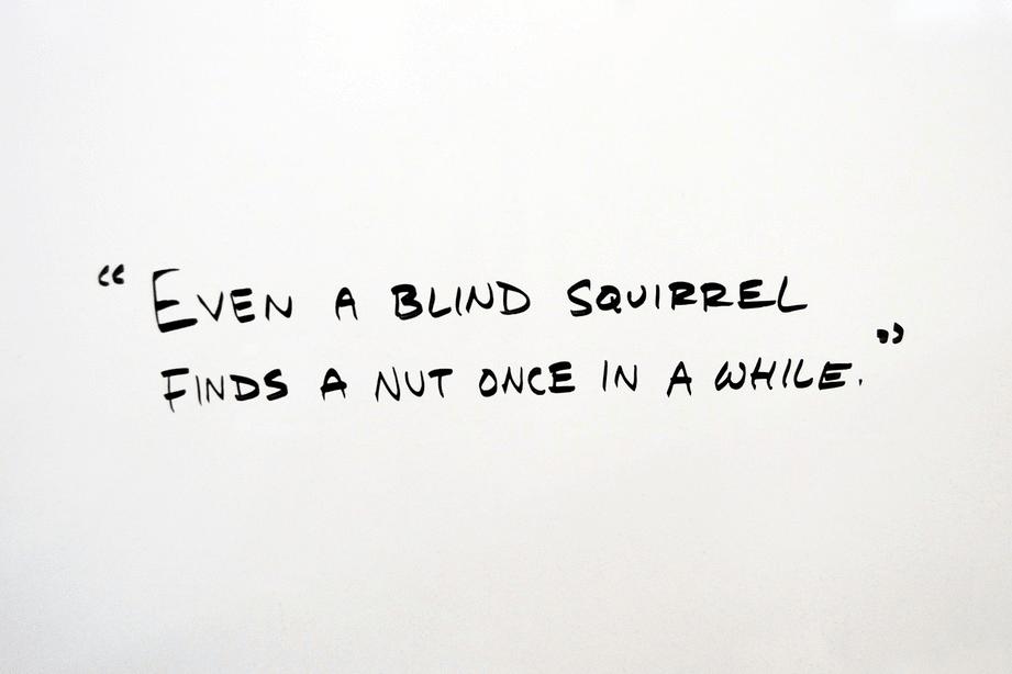 discredit: blind squirrel